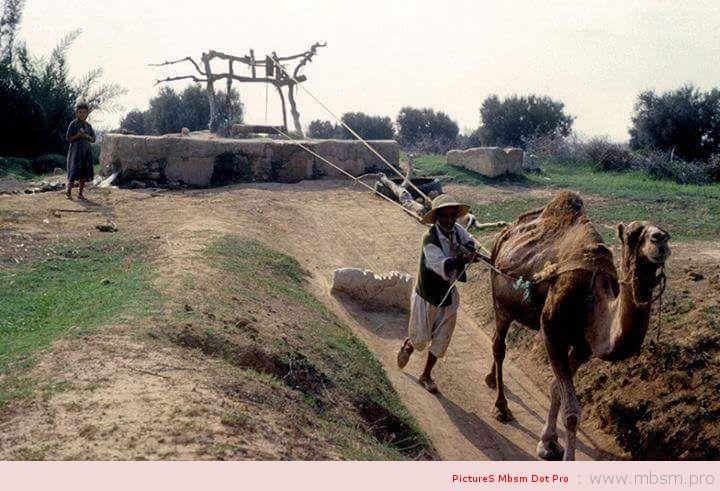 mbsm-dot-pro-wwwmbsmpro--culture-de-la-tunisie
